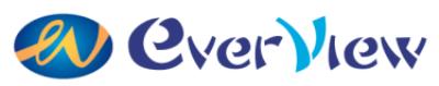 Everview logo